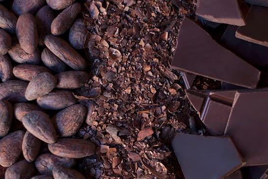 How To Taste Craft Chocolate