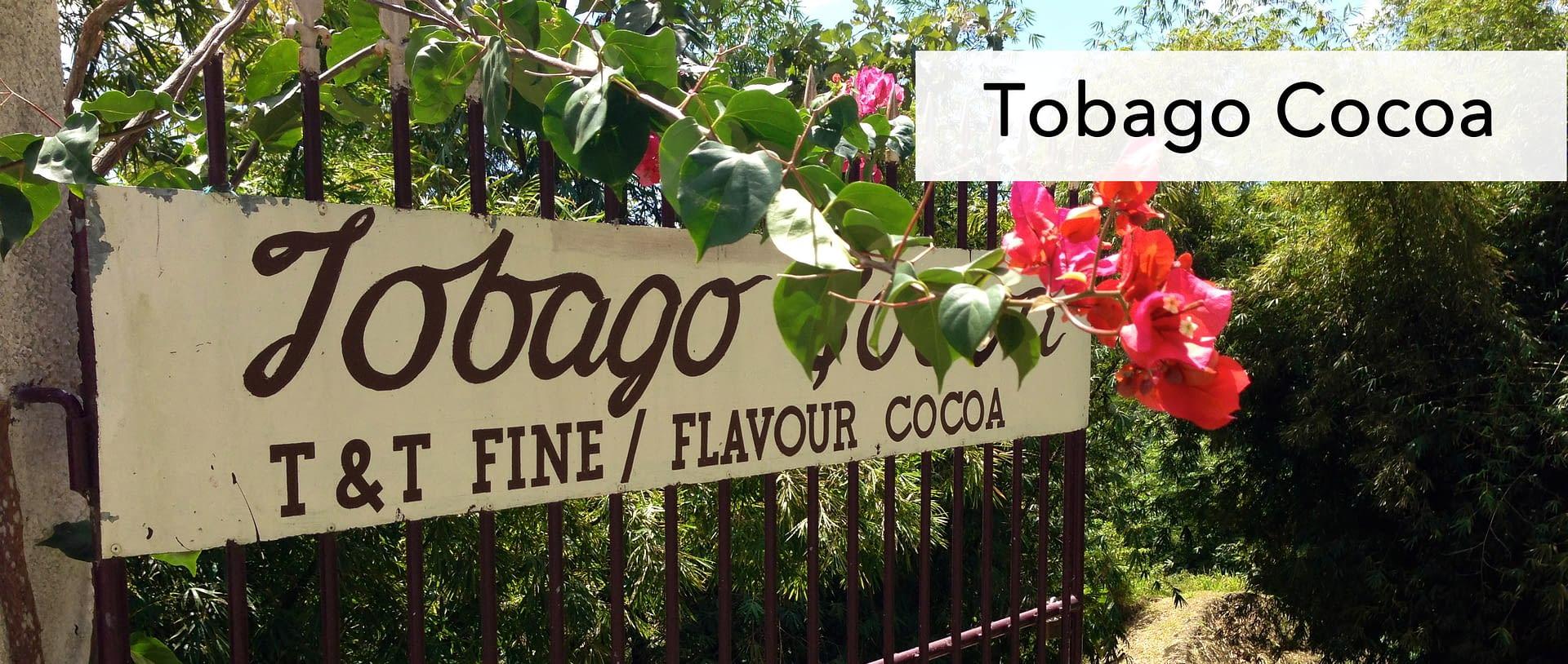 Tobago Cocoa